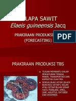 Prakiraan Produksi TBS Kelapa Sawit