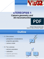 Stereopsis1