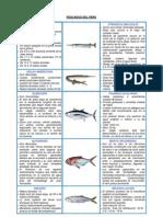 pescados del perú