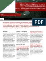CAMEP Resumen Del Estudio Puerto Maldonado - Espanol