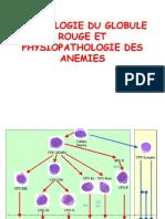 24. physiologie du globule rouge et physiopathologie des anémies