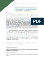 Aislamiento y  caracterización de hongos de ambiente contaminados con cobre y cadmio