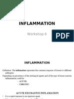 W6 Inflam.acuta Fin b