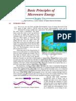 Basic Principles of Microwave Energy