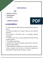 cap05_tecido_epitelial1