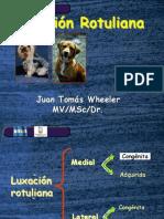 Ortopedia Rotula Luxacion Rotuliana.2011