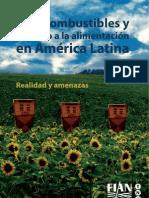 Agrocombustibles y Derecho a La Alimentacion en America Latina