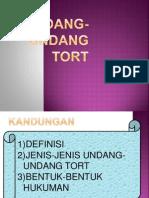 Undang Undang Tort