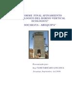 Informe final sobre implementación de horno vertical en Arequipa