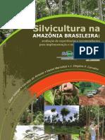 Silvi Cultura Brasileira