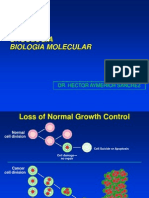 b. Oncology.ppt