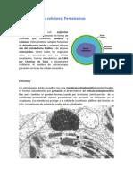 peroxisomas.pdf
