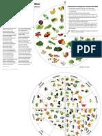 A3 Food Wheel