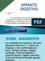 APARATO DIGESTIVO-SORANGEL