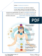 WORKSHOP- Anatomie energetica (2).doc