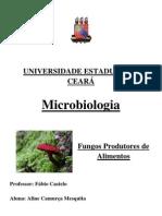MICROBIOLOGIA - FUNGOS E OS ALIMENTOS.docx