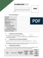 Resumen Curricular - Nuevo 2011