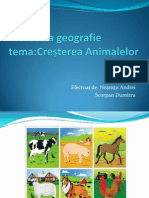 Proiect La Geografie Tema