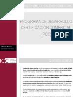 iccpresentacin-12832489375778-phpapp02