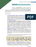 Prehistoria Apuntes.doc