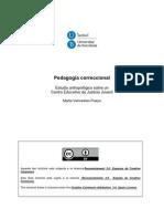 MVP_TESIS.pdf