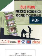 Derechos Económicos Sociales y Culturales CUT PERU