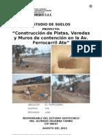 Av. Ferrocarril EMS Pavi-muros 03feb