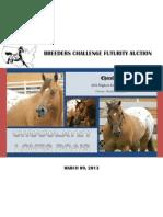 2013 bcf stallion auction catalog