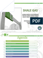 exposicion shale gas.pptx