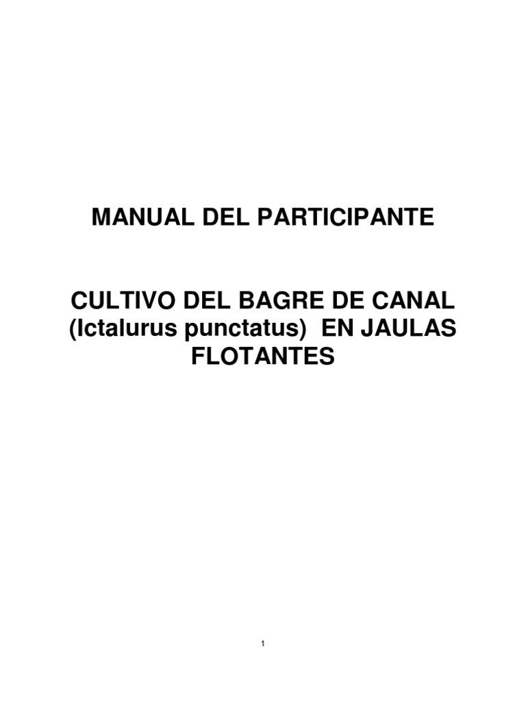 Bagre Canal Jaulas Flotantes