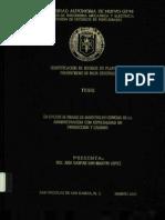 Identificacion de Riesgos en Plantas de Polietileno de Bsjs Densidad