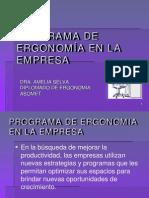 Tema 9 Programa Administrativo de Ergonomia