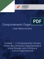 Comp Organizacional 01