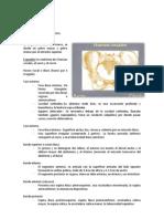 Pelvis Documento