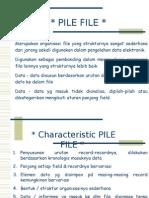 SIBER Pile File