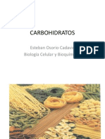 9.+Carbohidratos+ +Bio+Cel+y+Bioq+i.ppt
