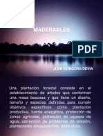 MADERABLES.pptx