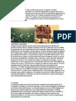 Oceanía actividades economicas.doc