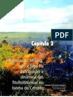 Capítulo 3 - Influência solo fogo na distribuição  e dinâmica das fitofisionomias no bioma do cerrado