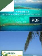 Undersea Presentation