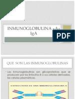 Inmunoblobulina a