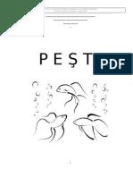 Despre Pesti