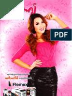 2013 03 Arrawgyan - discussion.pdf
