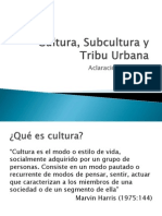 Cultura, Subcultura y Tribu Urbana