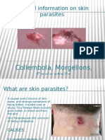 General Information on Skin Parasites