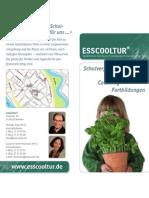 esscooltur-Flyer