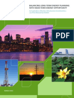 Energy Diversification White Paper