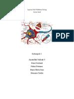 Laporan Hasil Praktikum Biologi Sistem Saraf
