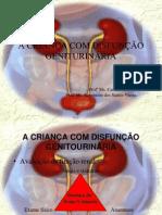 A CRIANÇA COM DISFUNÇÃO GENITOURINÁRIA
