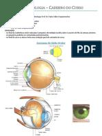 apostila oftalmo